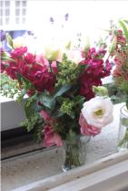 Flowers in WIndow